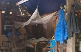 Ma túy len lỏi vào nhiều gia đình ở Sơn La