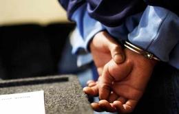 Australia, Hà Lan, UAE triệt phá tổ chức tội phạm ma túy