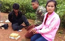 Quảng Bình: Bắt giữ vụ vận chuyển 12.000 viên ma túy tổng hợp