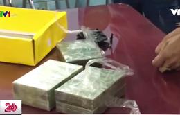 TP.HCM triệt phá 3 đường dây vận chuyển, buôn bán ma túy