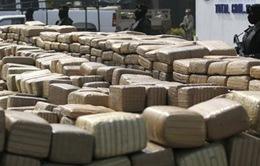 Brazil triệt phá đường dây vận chuyển ma túy bằng đường hàng không