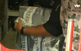 Australia thu giữ lượng cocaine lớn kỷ lục