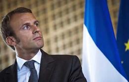 Ứng cử viên Tổng thống Pháp Macron lên kế hoạch gặp Thủ tướng Đức