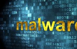 Tăng cường giải pháp ngừa mã độc từ phần mềm bản quyền