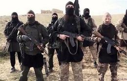 IS đã tuyển hàng chục ngàn chiến binh qua mạng xã hội