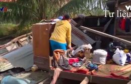 Khánh Hòa: Hoàn thành việc xây mới, sửa nhà ở vùng bão trước Tết