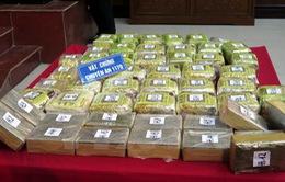 Hải quan bắt gần 8kg ma túy tổng hợp