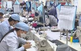Việt Nam tăng cường kết nối thương mại với Argentina
