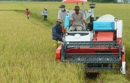 Máy nông cụ cấp cho người dân ở Bình Thuận là máy Trung Quốc