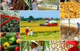 Diễn đàn Tài nguyên Mekong lần thứ ba: Kết nối ý tưởng cộng đồng