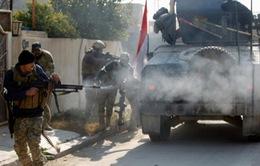 Iraq: Thành phố Mosul sắp sạch bóng quân khủng bố IS