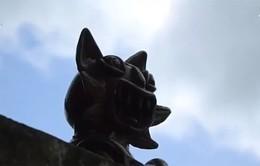 Những chú mèo ngộ nghĩnh trên mái nhà tại Trung Quốc