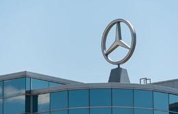 Tháng 7/2017, Mercedes-Benz báo cáo về việc triệu hồi xe ở Việt Nam