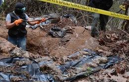 Mexico phát hiện hơn 240 thi thể trong những ngôi mộ tập thể