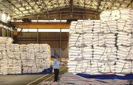 Hiệp hội Mía đường: Tồn kho đường không phải do chất tạo ngọt thay thế