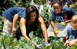 Di sản của Đệ nhất phu nhân Mỹ Michelle Obama