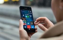 Microsoft chính thức nói lời đầu hàng với smartphone