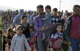 EU tăng cường bảo vệ trẻ em nhập cư