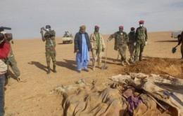 Quân đội Niger cứu hơn 60 người bị bỏ rơi tại sa mạc