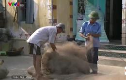 Cuộc sống khó khăn của ngư dân huyện Tĩnh Gia, Thanh Hóa