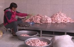 Thu giữ hơn 1 tấn mỡ lợn không rõ nguồn gốc xuất xứ