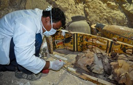 Ai Cập phát hiện ngôi mộ cổ hơn 3.500 năm