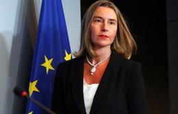 EU ký kết thỏa thuận hợp tác quốc phòng quan trọng