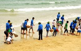 Khoảng 1.000 người tham gia dọn vệ sinh tại Bà Rịa - Vũng Tàu