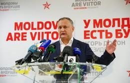 Moldova tổ chức trưng cầu dân ý về các vấn đề lớn của đất nước