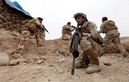 Quân đội Iraq mở đợt tấn công mới nhằm vào phía Tây Mosul