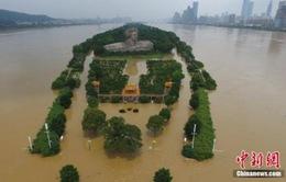 8 người thiệt mạng do mưa lũ tại Trung Quốc