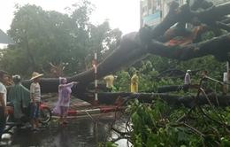 Hoàn lưu bão số 6 gây mưa giông và lốc xoáy ở Lào Cai