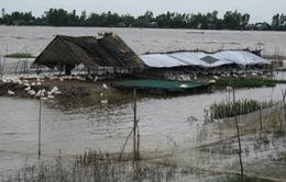Công điện về việc chủ động ứng phó với mưa lũ ở ĐBSCL