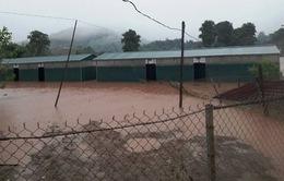 4 người thiệt mạng do mưa lũ tại Điện Biên
