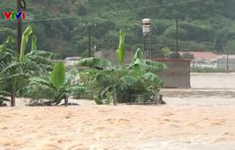 Mưa lũ ở Sơn La khiến 8 người thiệt mạng và mất tích