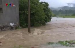 Thanh Hóa hỗ trợ gần 20 tỷ đồng giúp khôi phục sản xuất sau mưa lũ