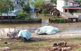 138 công trình thủy lợi ở Yên Bái bị tàn phá do mưa lũ