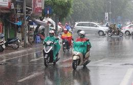 Khu vực Thanh Hóa - Thừa Thiên Huế mưa rào rải rác kèm giông