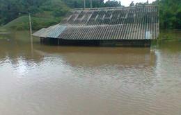9 người thiệt mạng do mưa lũ tại các tỉnh miền núi phía Bắc