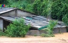 Thiệt hại nặng nề do mưa lũ tại các tỉnh phía Bắc