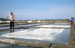 Quảng Ngãi đầu tư sản xuất muối sạch ở Sa Huỳnh