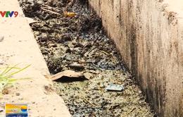Khu tái định cư xuống cấp do bất cập từ hệ thống mương thoát nước