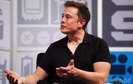 CEO Tesla không mặn mà với xe bus điện