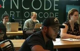Giải mã cơn sốt lập trình viên