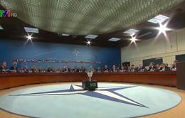Tổng thống Donald Trump: Không thể để Mỹ mãi gánh phần nặng nhất trong khối NATO