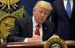 Mỹ hạn chế thị thực cho lao động nước ngoài: Mong manh giấc mơ Mỹ?