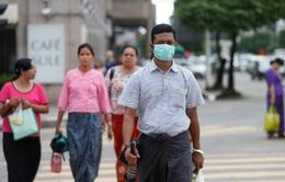 Dịch cúm gia cầm H5N1 tại Myanmar đã được kiểm soát