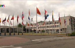 NATO họp cụ thể hóa cam kết tham gia chống khủng bố, tăng ngân sách quốc phòng
