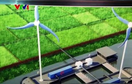 Ứng dụng năng lượng gió trong xử lý nhiễm mặn