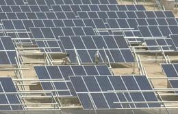 Dự án năng lượng sạch quy mô lớn tại Ấn Độ